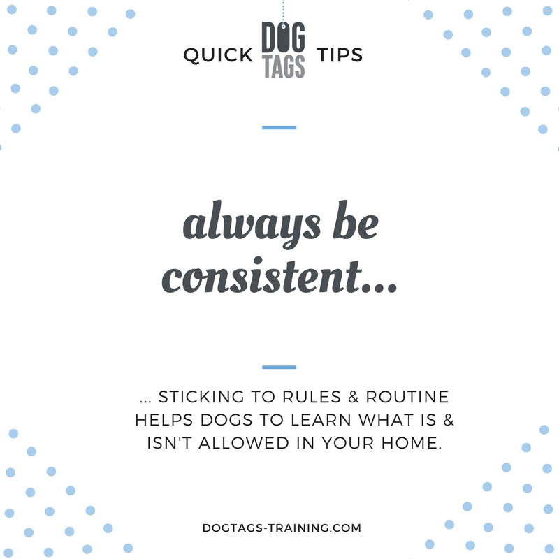 quick tips 16.jpg