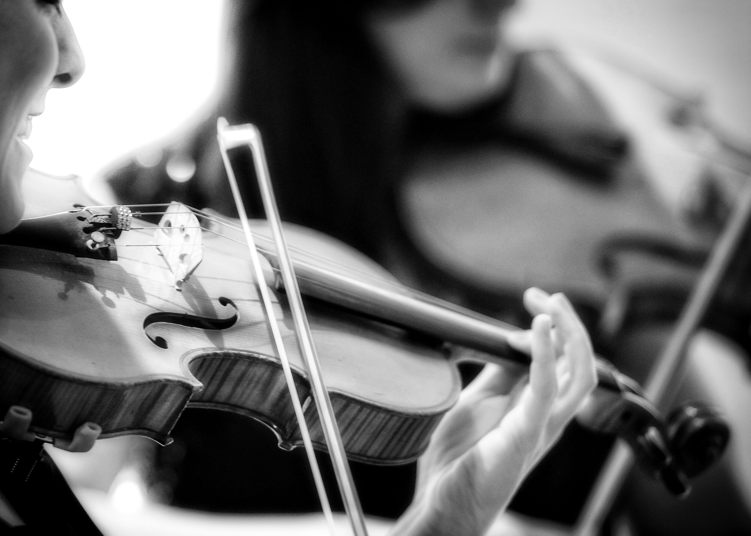 Titanium String Quartet - London's finest all female string quartet play for weddings, private events and corporate bookings.