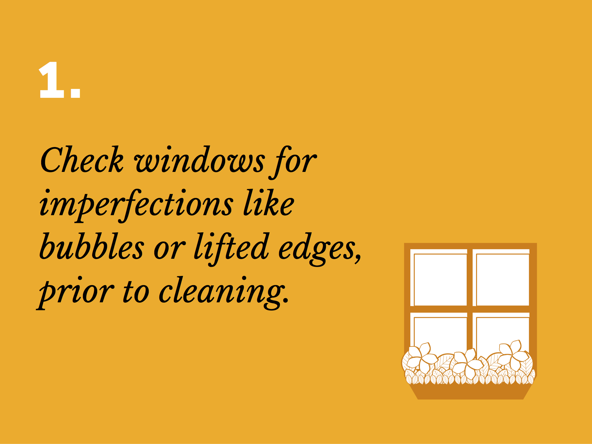 Window Film Care 1.jpg