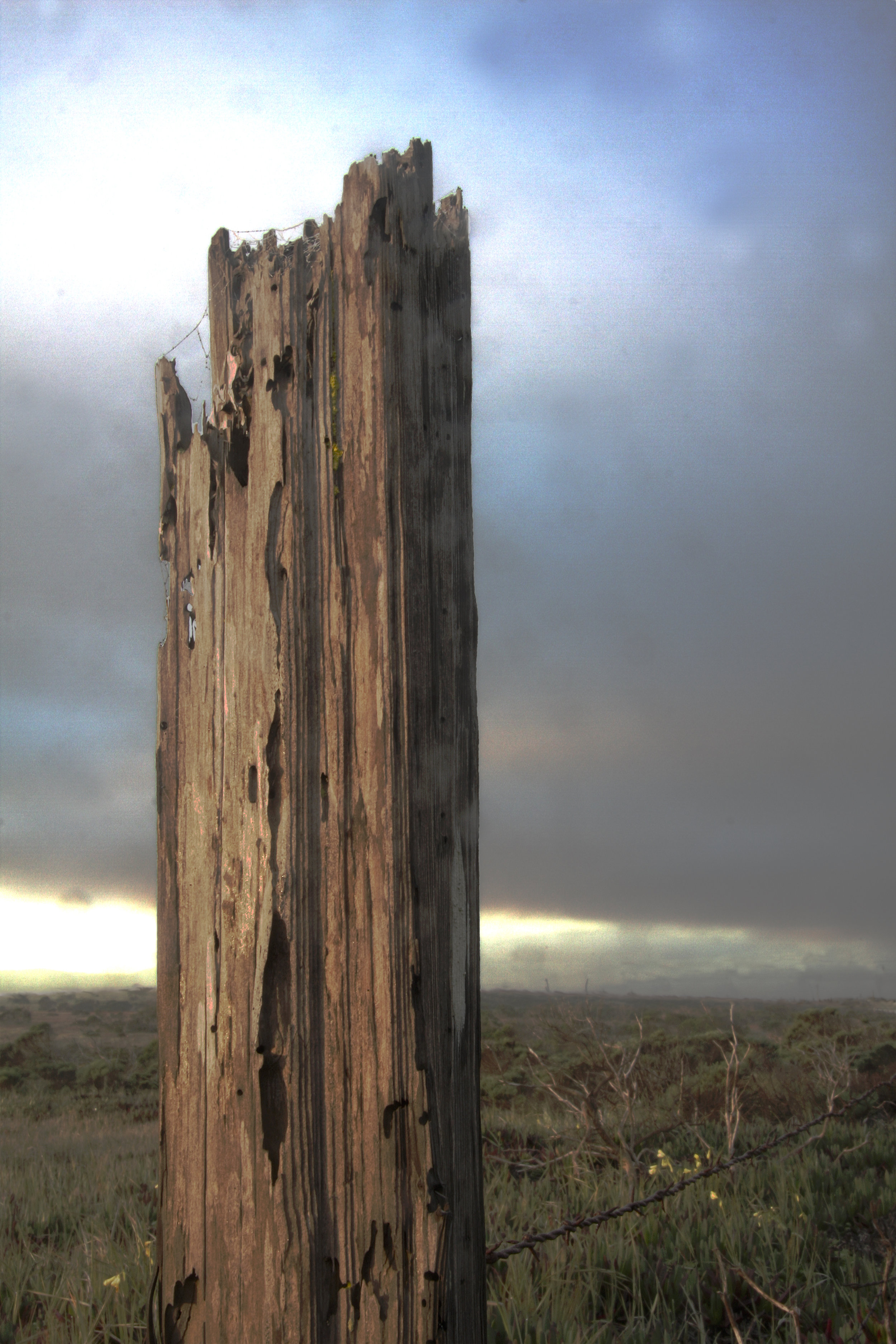 Armstrong Ranch Fencepost