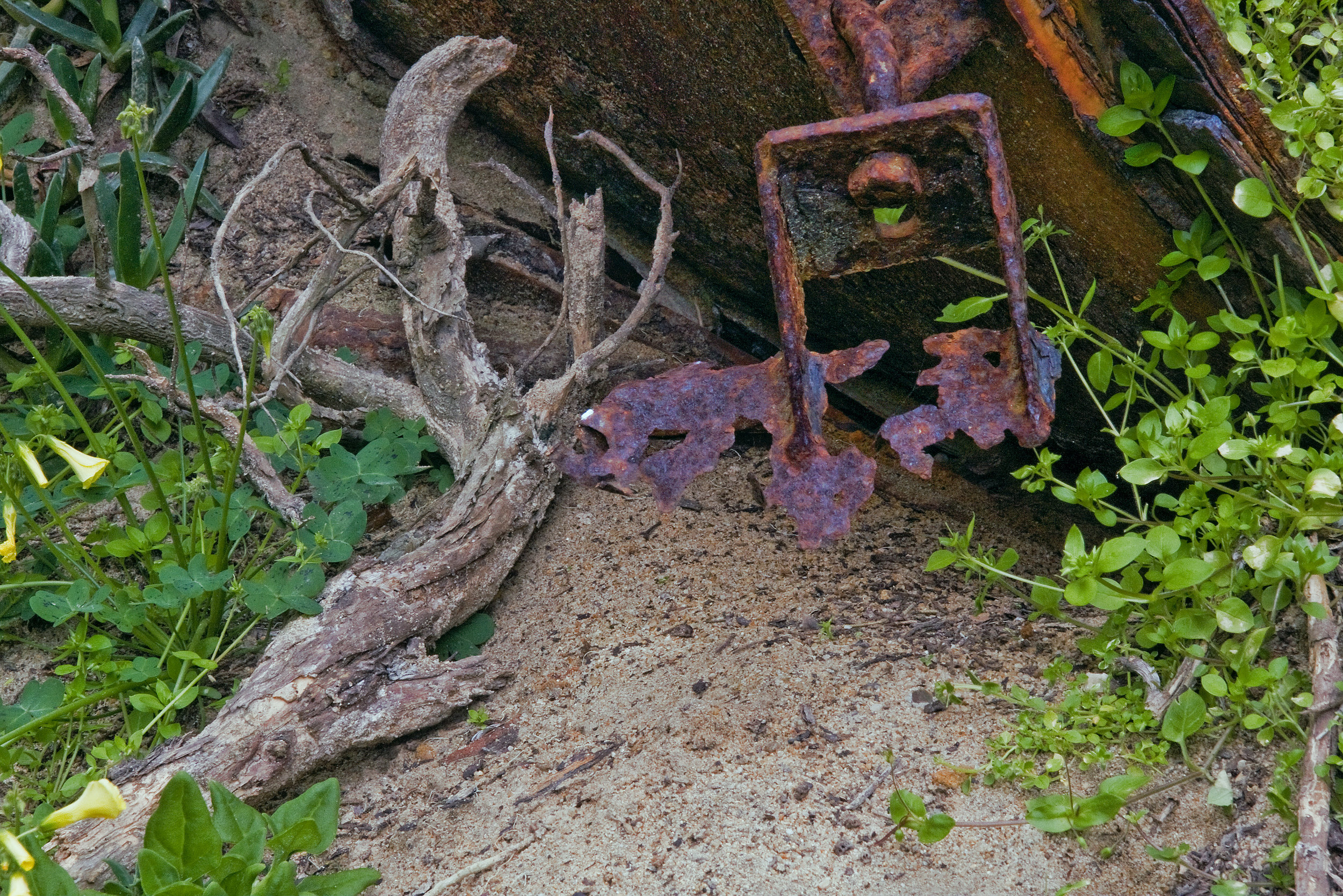 Rusty Sand Bucket