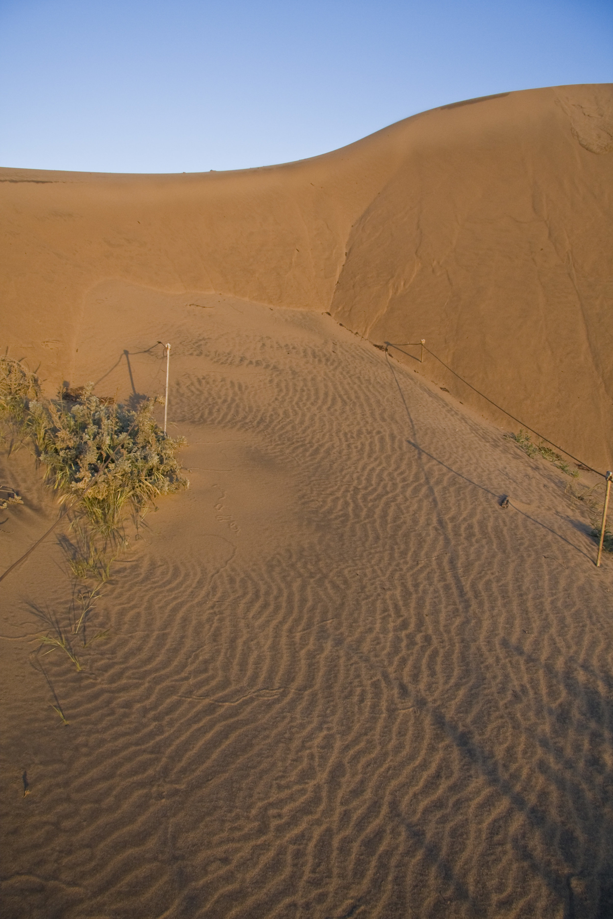 Moving Dunes