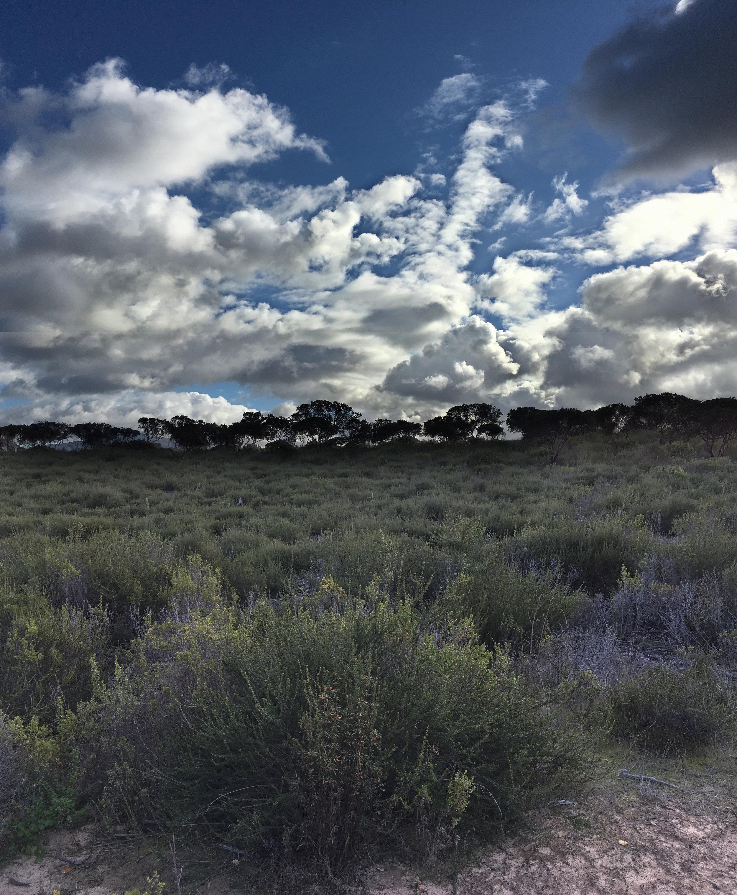 Addington Trail