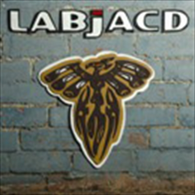 Labjacd - Vote With Your Feet.jpg