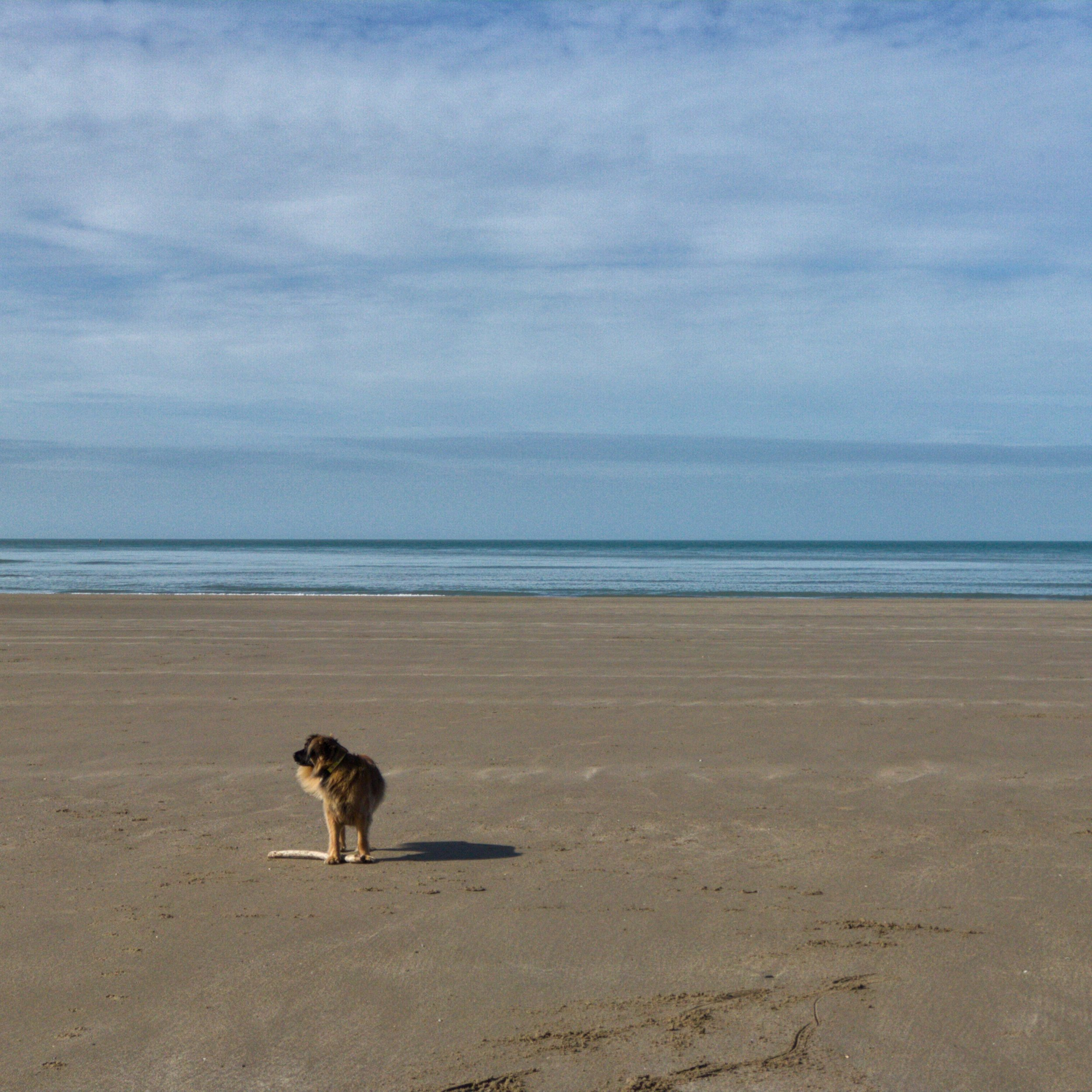 The vast expanse of Barmouth Beach