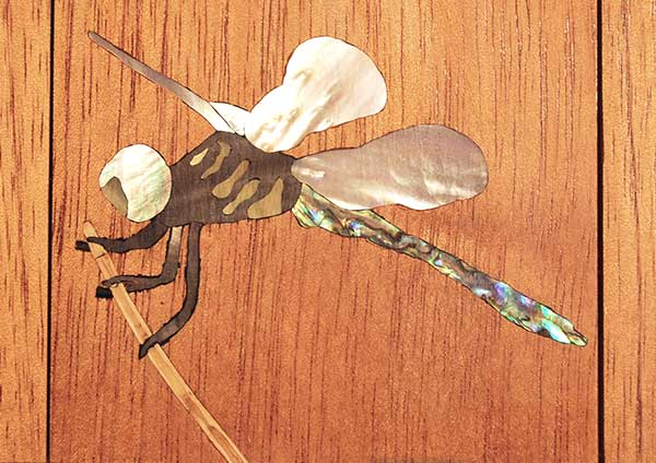 Dragon Fly Inlay