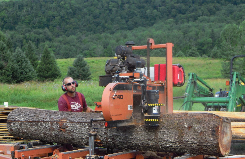 Miles cutting into a black cherry log
