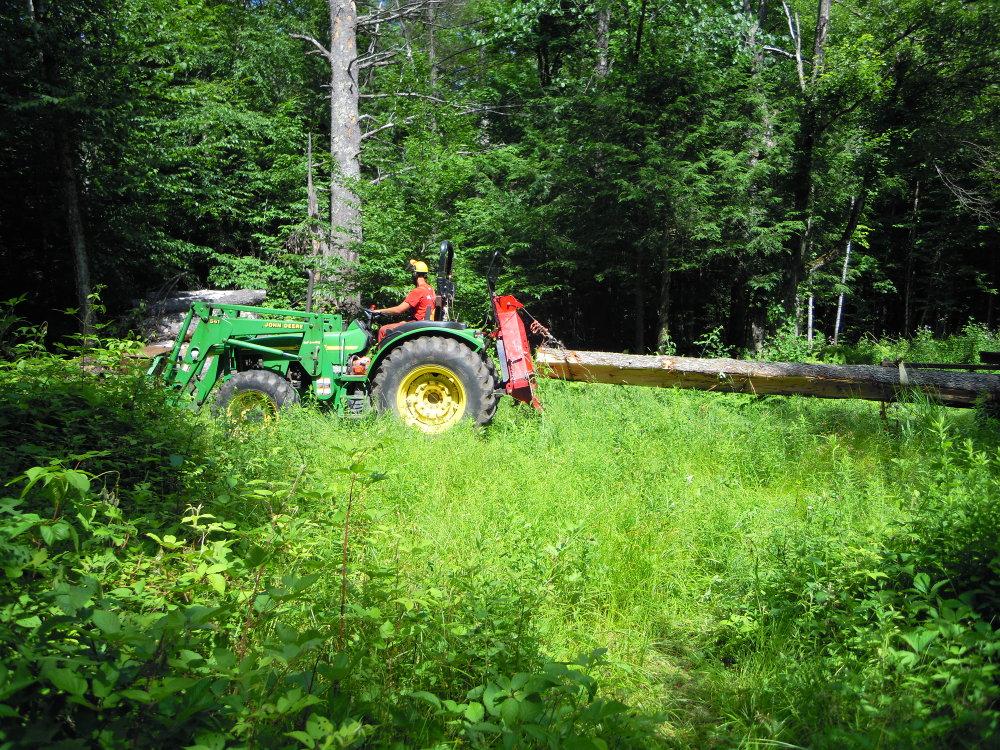 "Hauling 29"" cherry log to the landing"