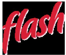 flash-logo-diaz-foods.png
