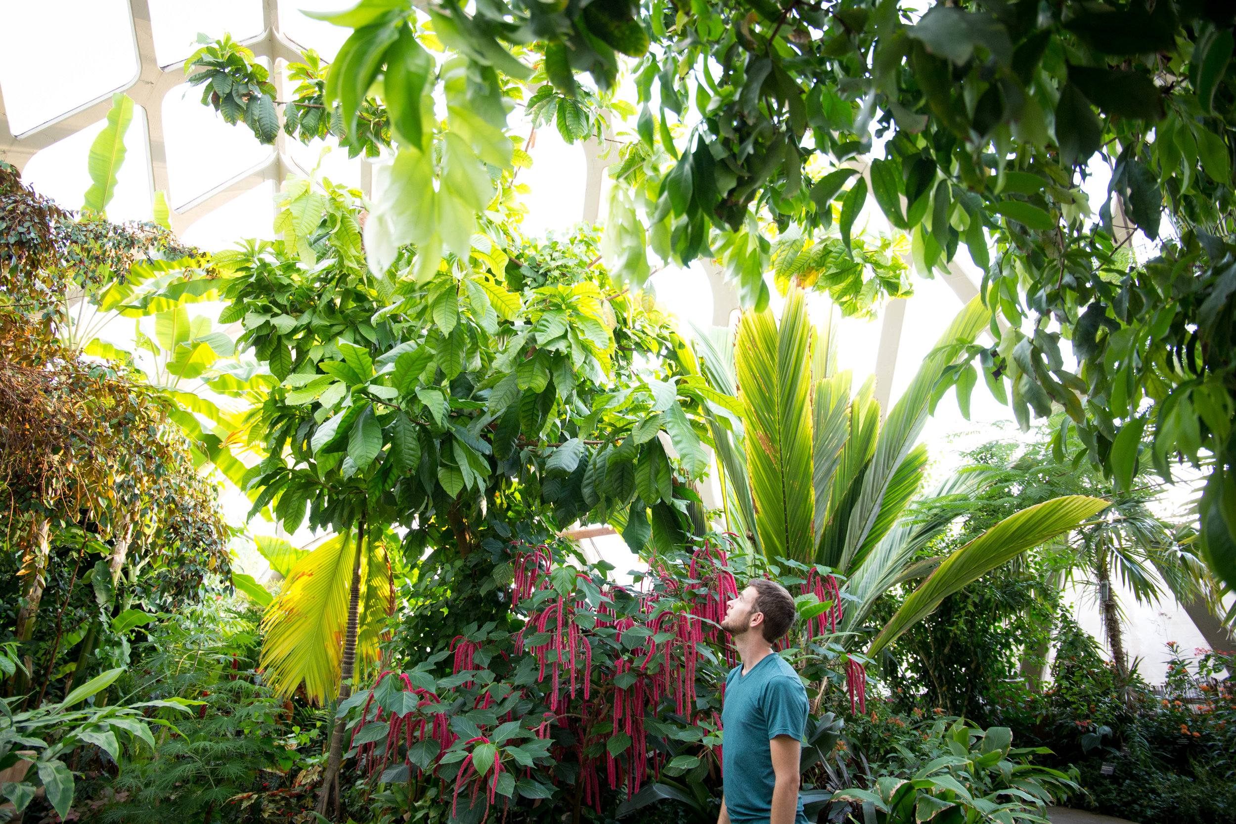 Denver-Botanical-Gardens-wedding-locations
