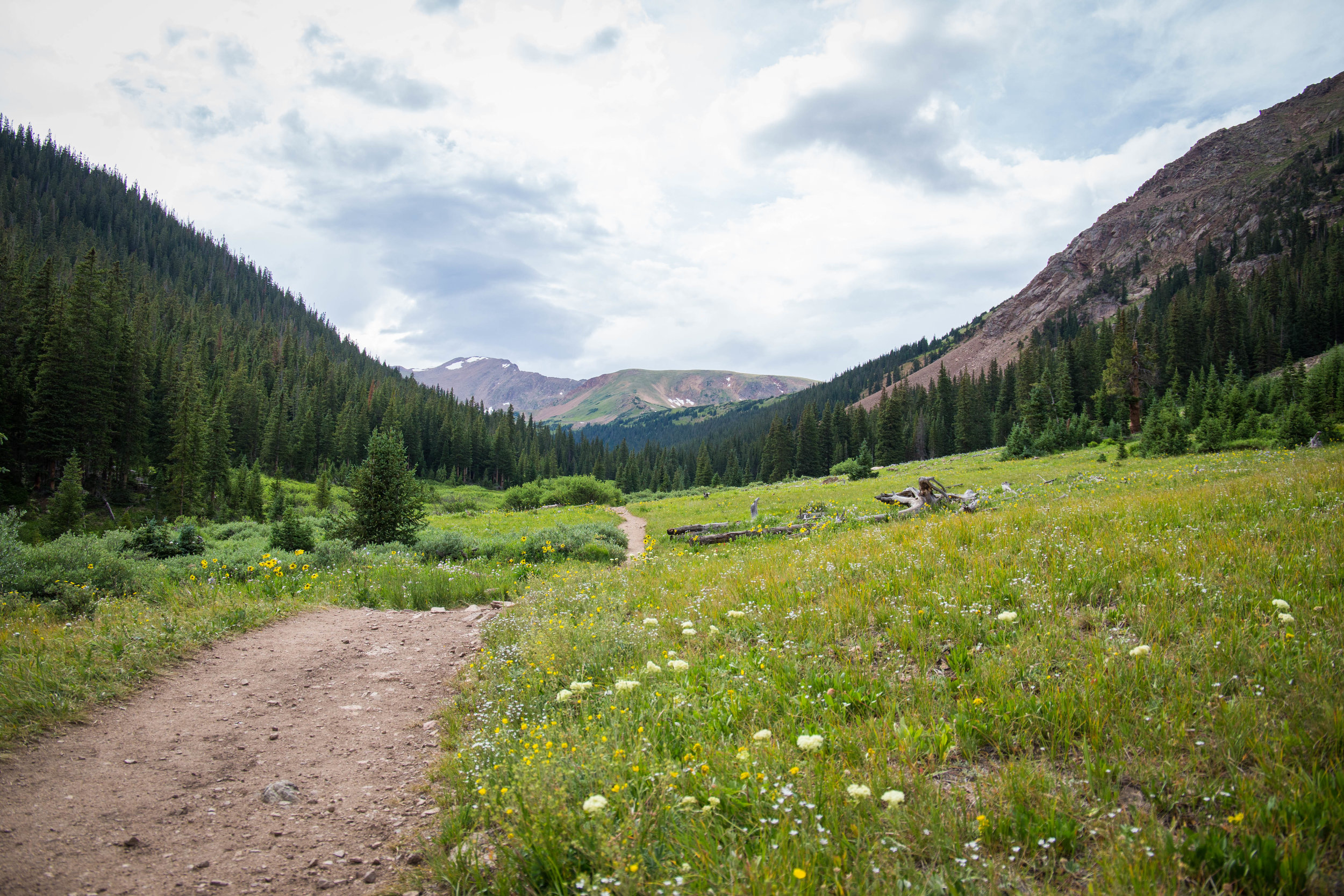 Colorado-elopement-videographer