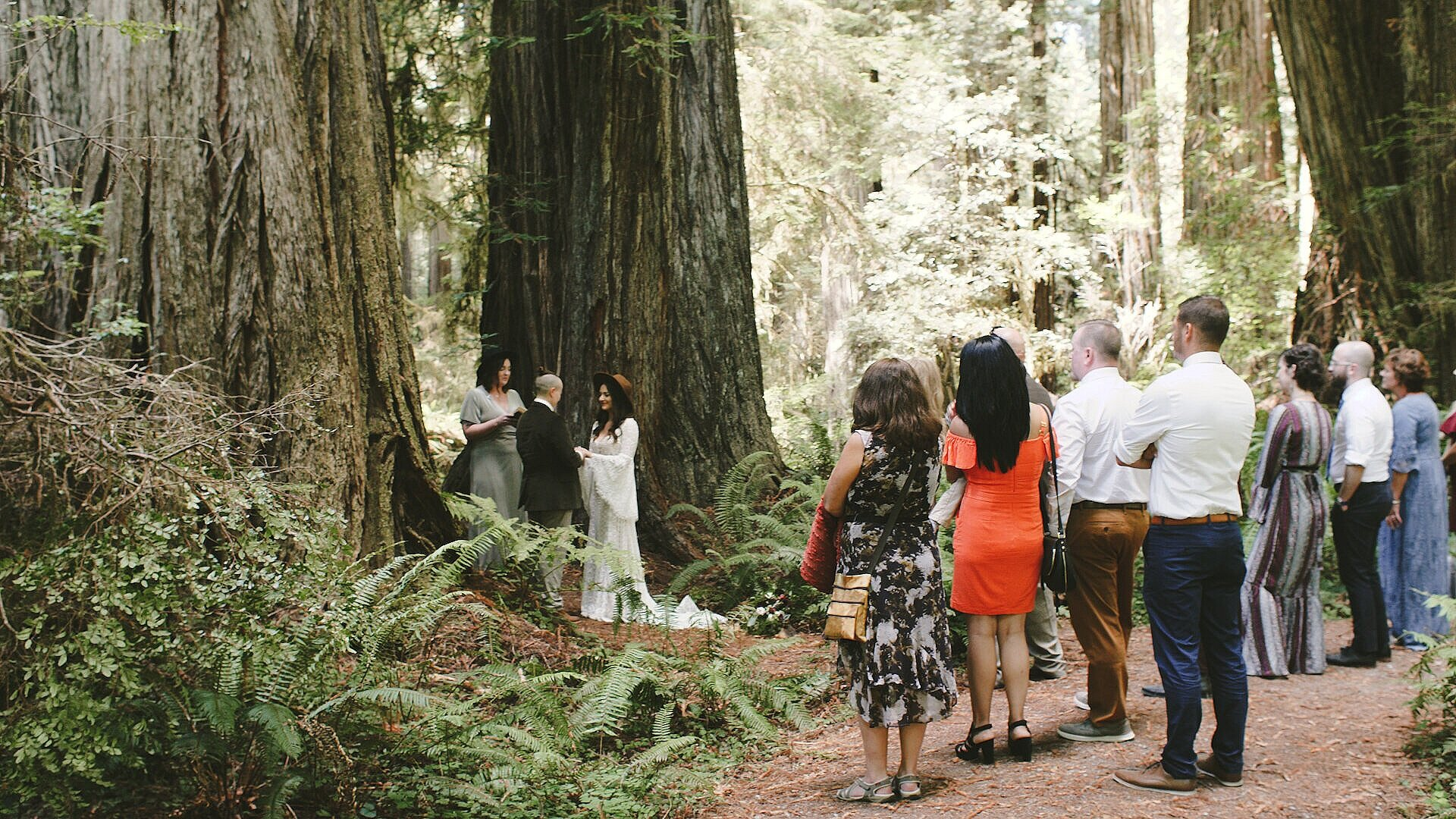 A couple is having their wedding ceremony in the redwoods and is surrounded by a few family and friends who are watching.