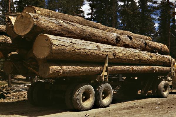 lumber transportation.jpg