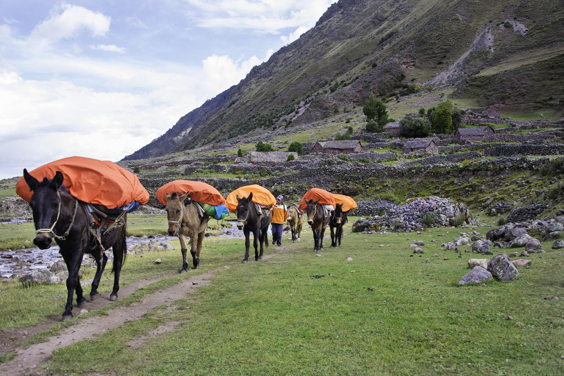 390-Peru-5-15_web.jpg