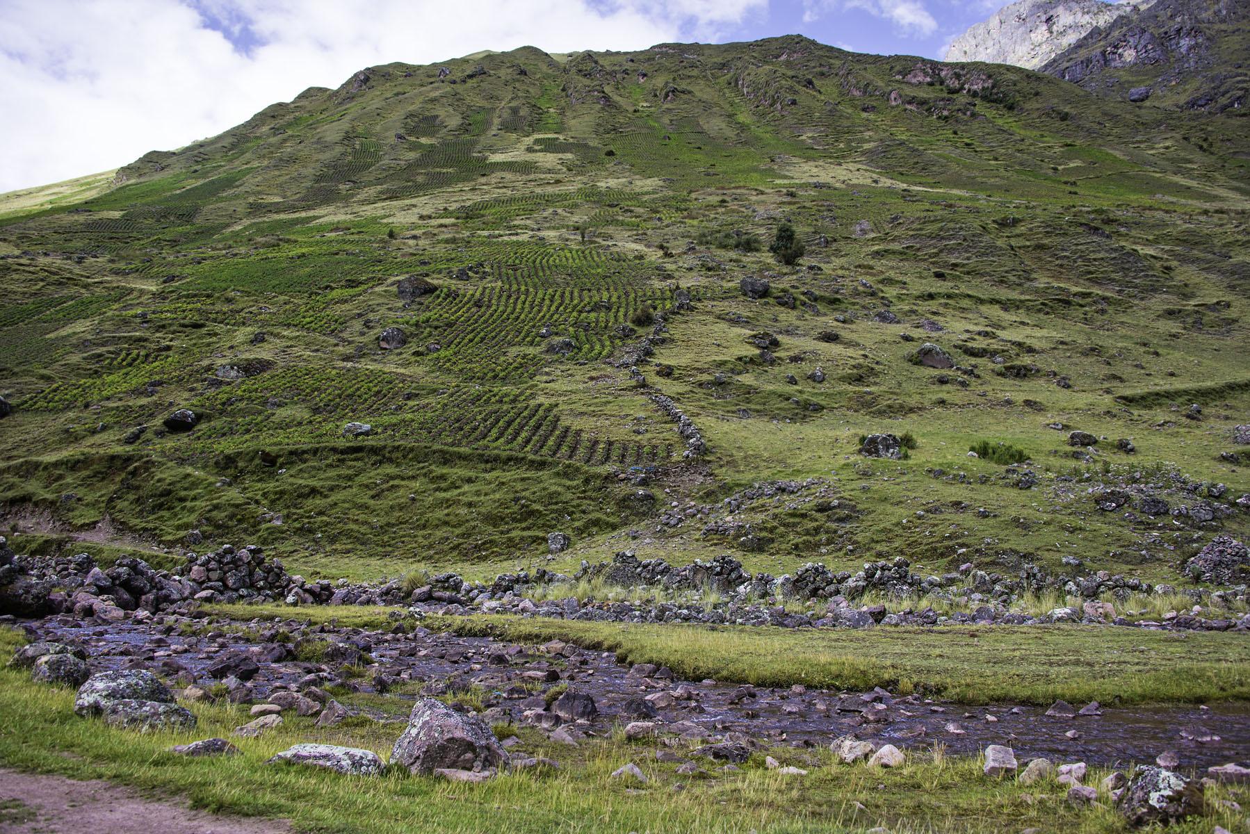 393-Peru-5-15_web.jpg