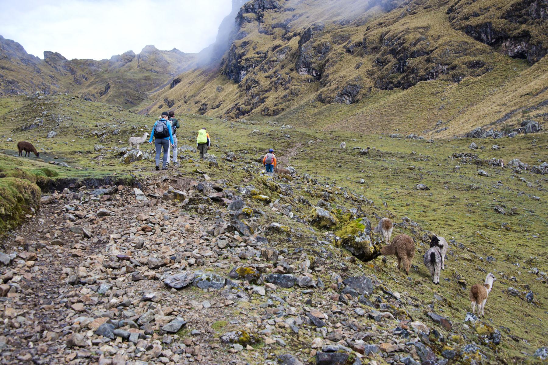 181-Peru-5-15_web_web.jpg