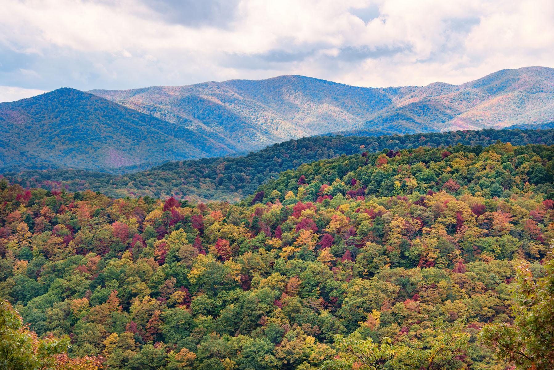 Fall Foliage in Smoky Mountains on Blue Ridge Parkway
