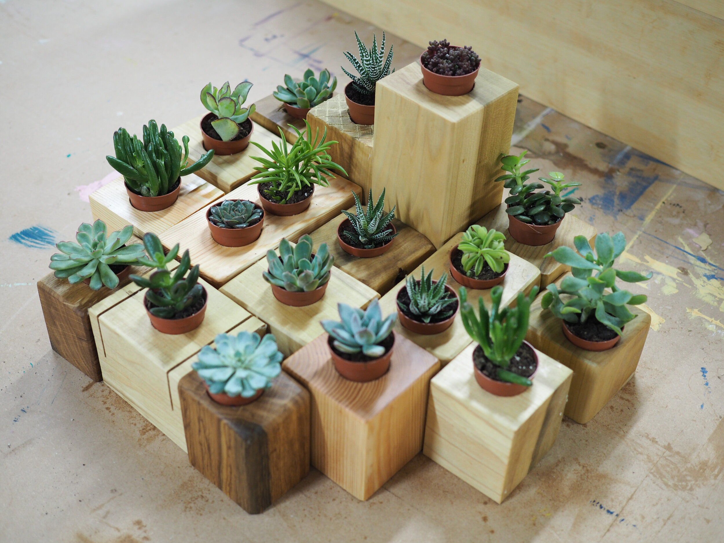 Make Your Own Mini Desk Planter.JPG