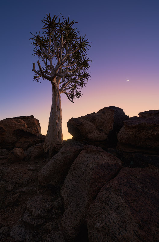 """Twilight Colour Palette"" - Augrabies Falls National Park, Northern Cape, South Africa  A crescent moon hangs low in the clear, twilight sky of sunset. Beautiful colours from the setting sun tinge the atmosphere in soft hues signalling the end of a very hot day over the harsh environment of the northern Cape."