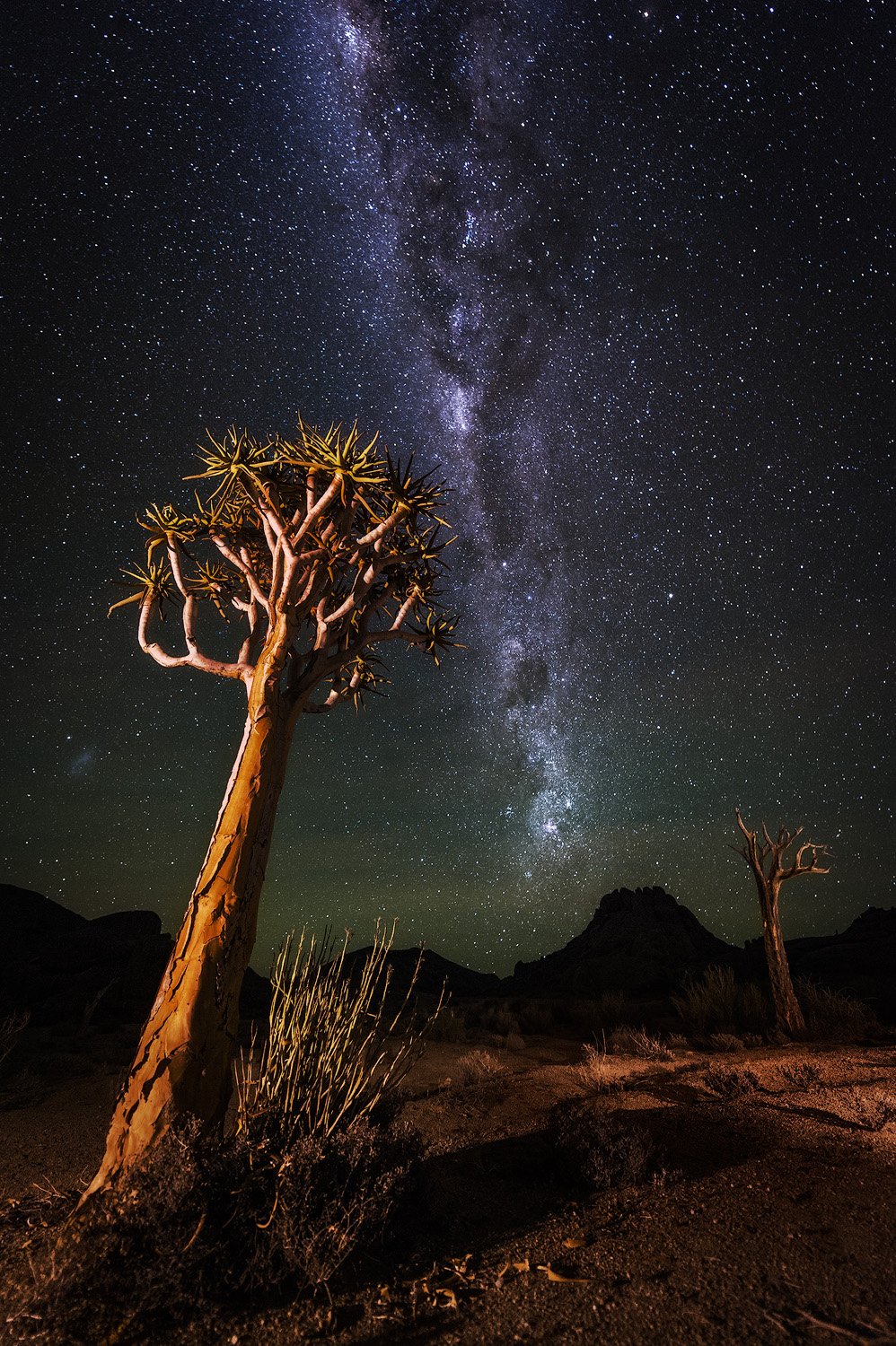Milky Way over Kokerboomkloof