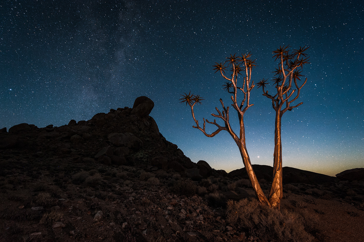 Nocturnal Richtersveld