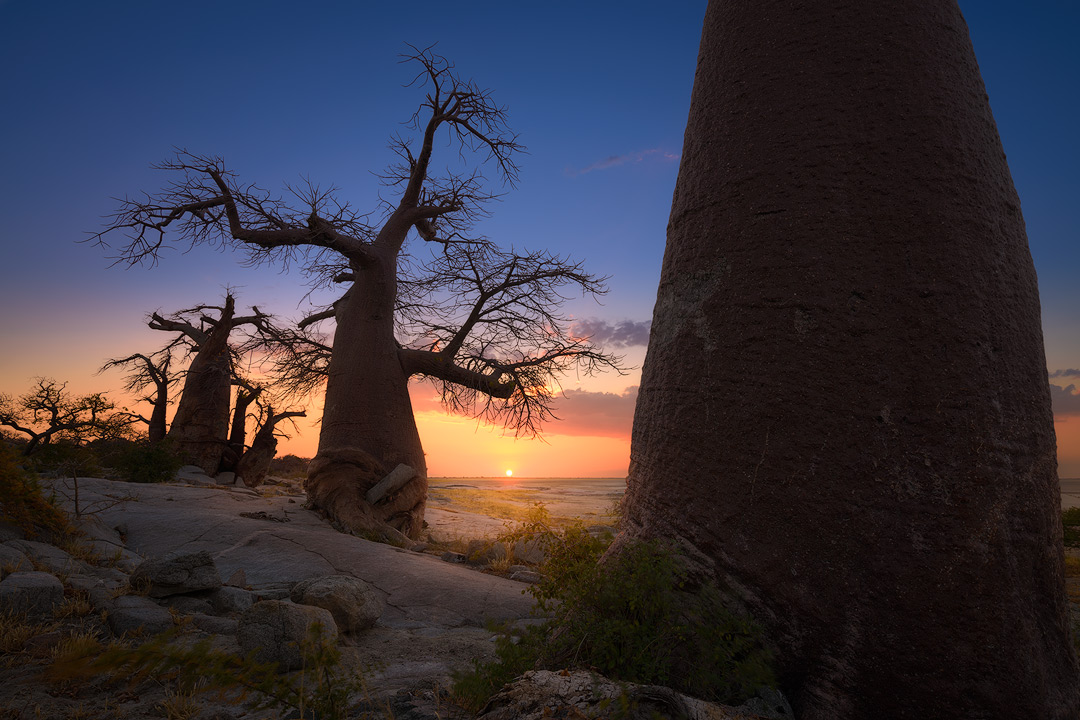 Copy of Botswana Beauty