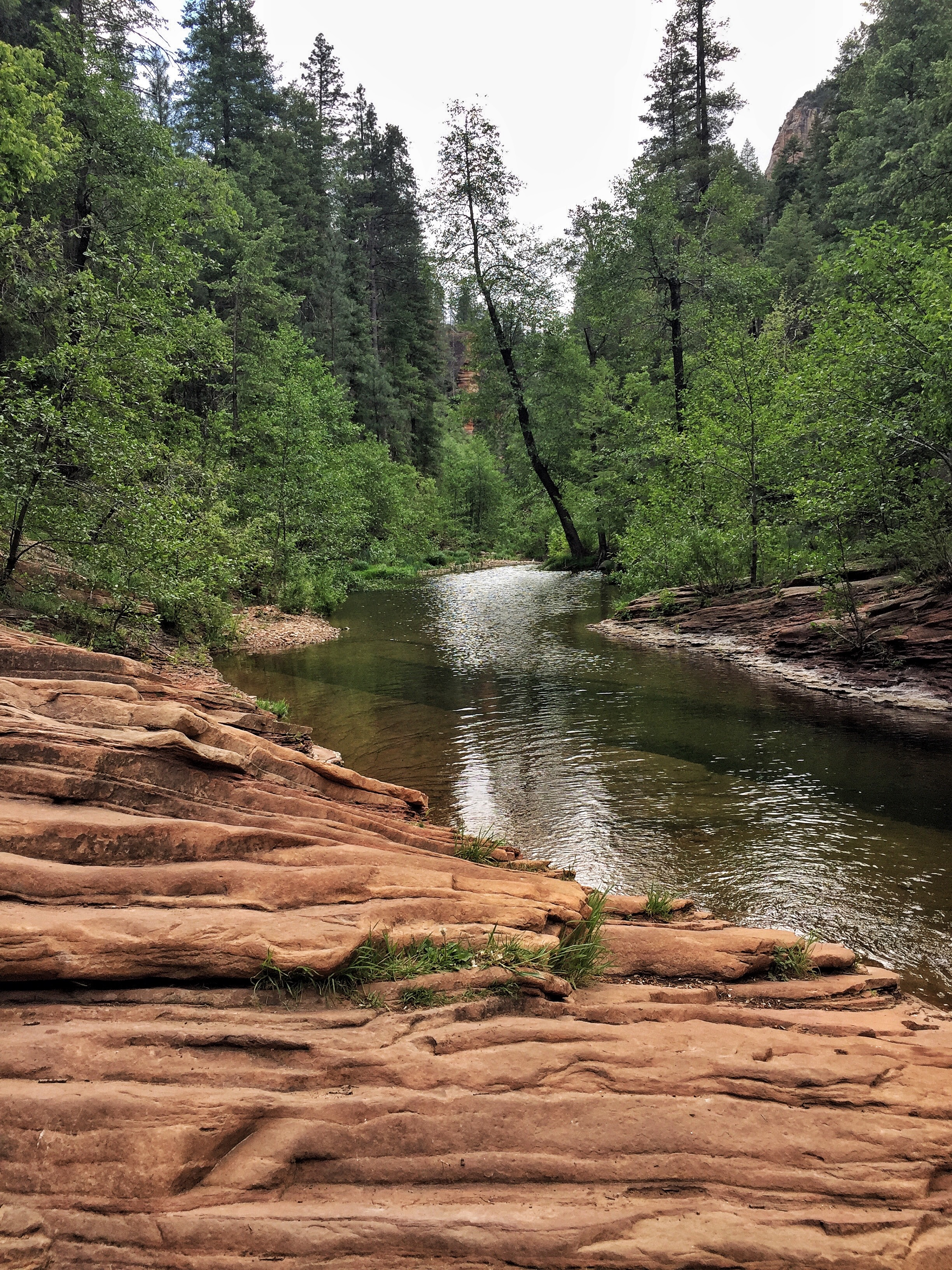 And the water so cool! West Fork, Coconino National Forest, Sedona Arizona.