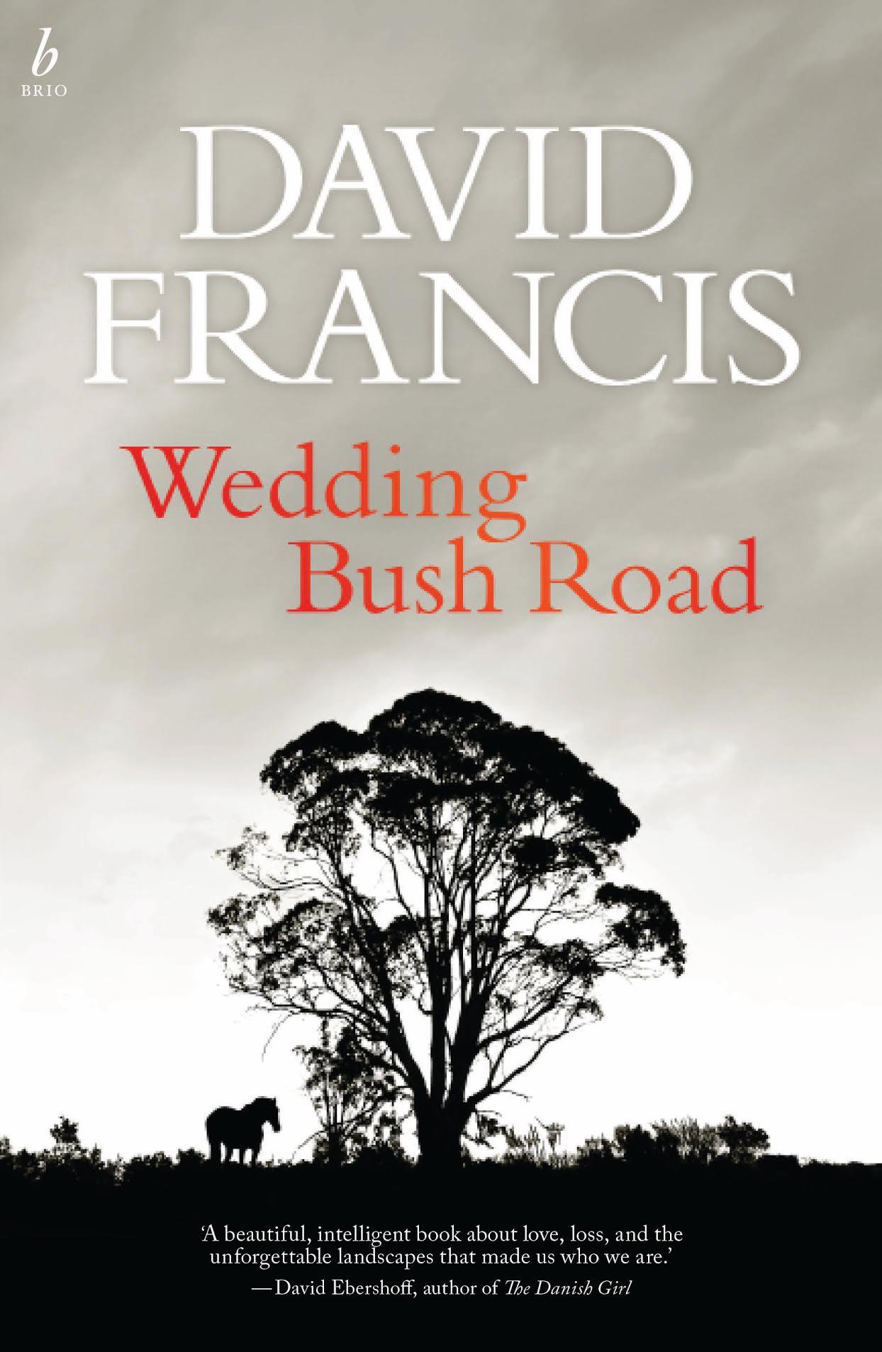 david francis - wedding bush road.jpg