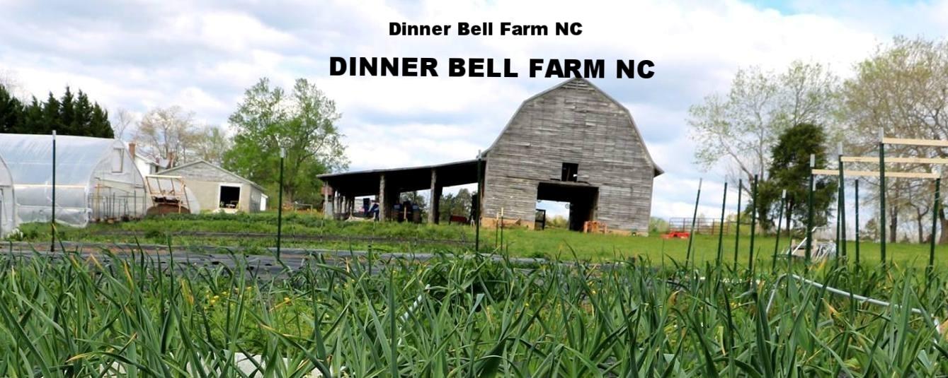Dinner Bell Farm NC
