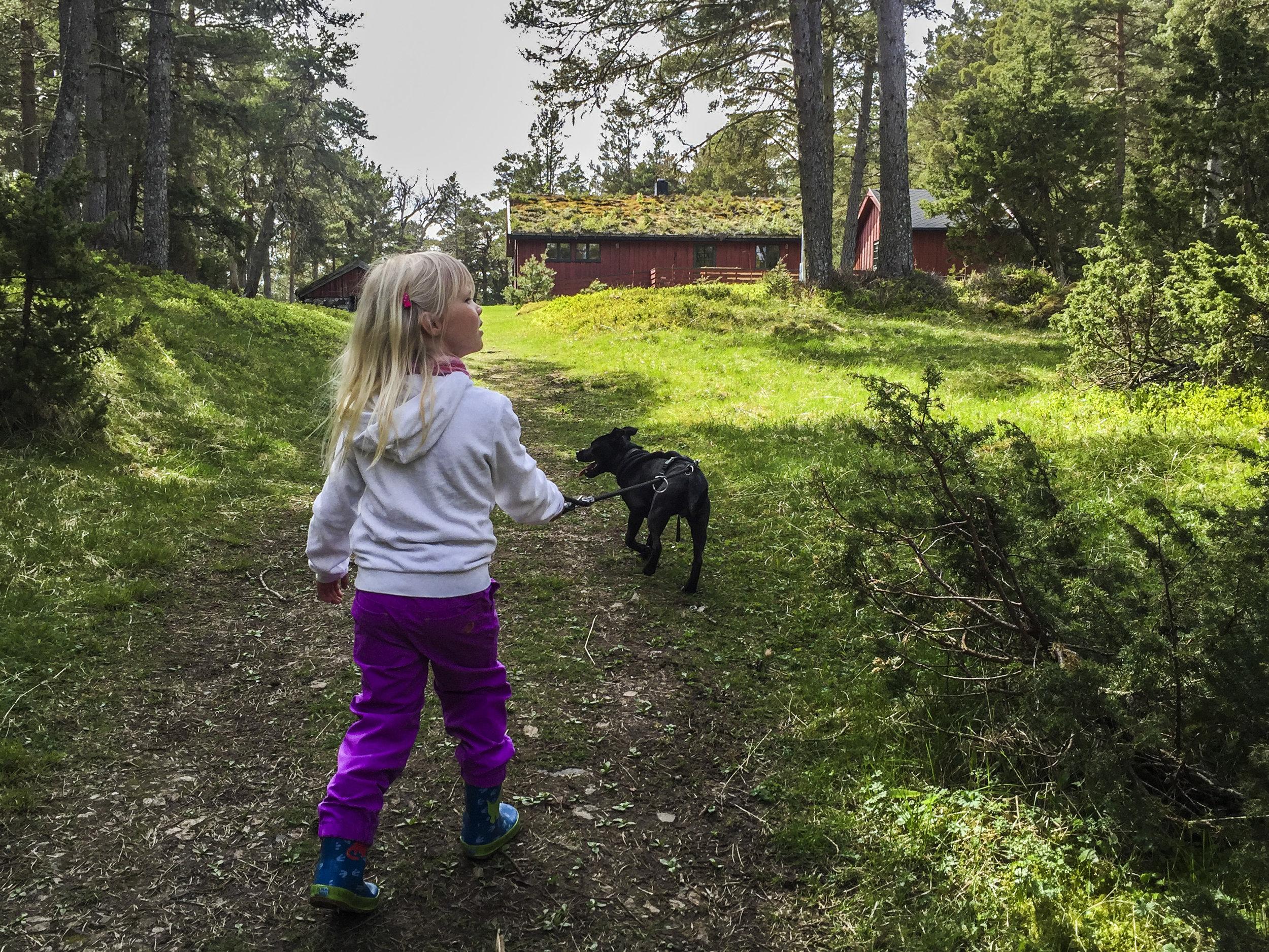 Flotte turstier på Hitra og Frøya