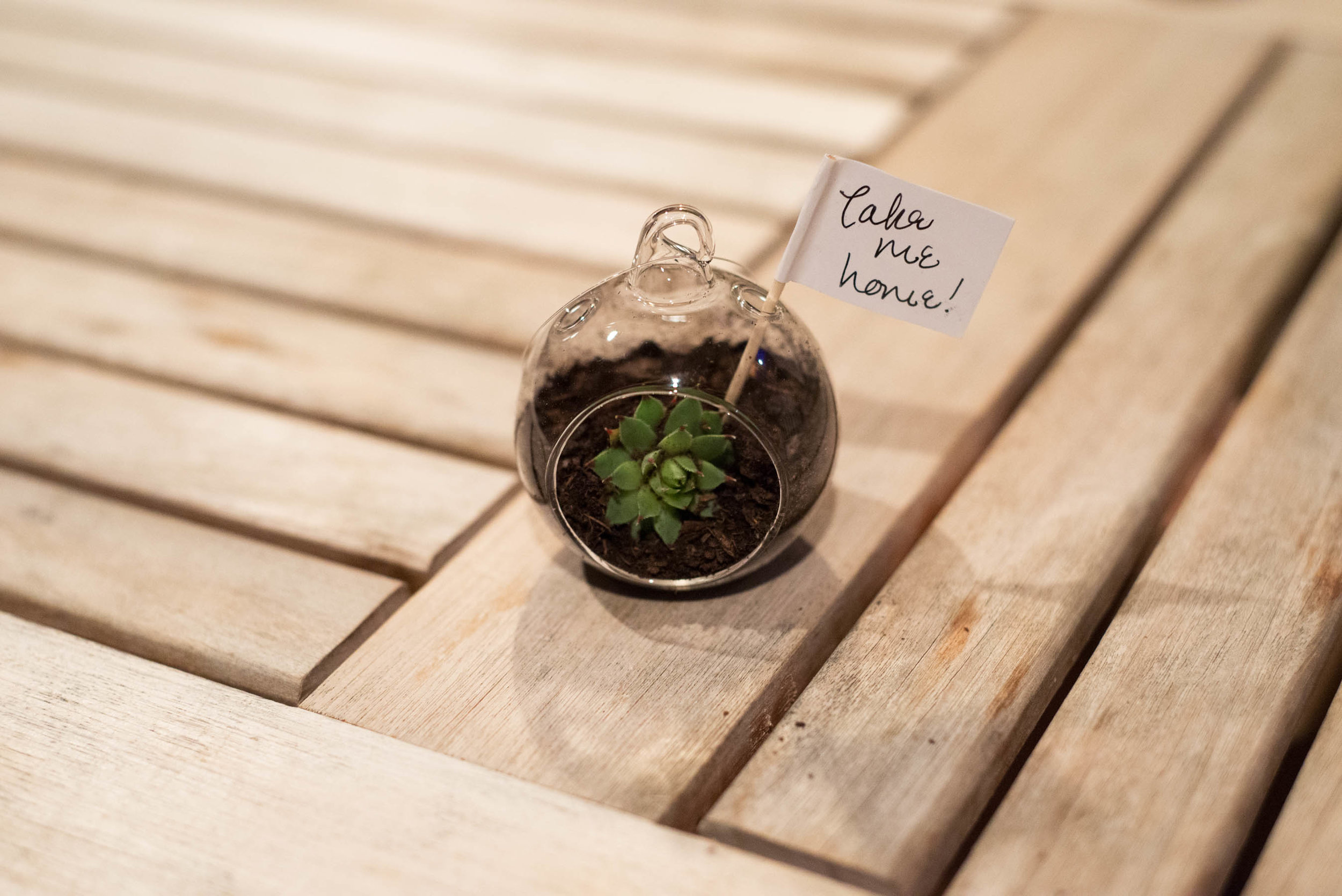 wedding-favors-that-you-will-love.jpg