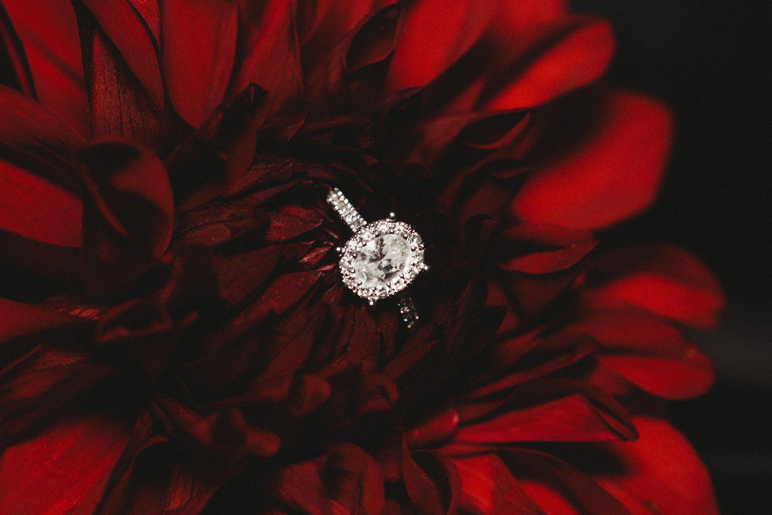 engagement-ring-photos.jpg