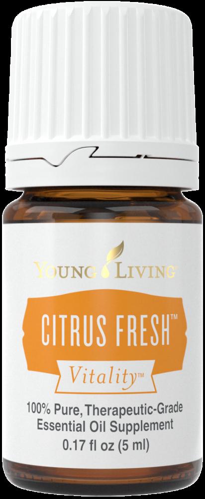 citrus-fresh-vitality.png