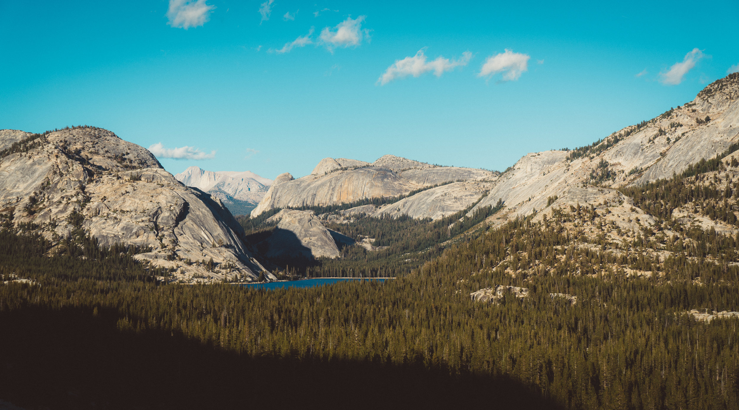 The last photo from Yosemite. This is at quite a high elevation, far from the valley, exiting the park. I believe somewhere around 8000-9000ft.