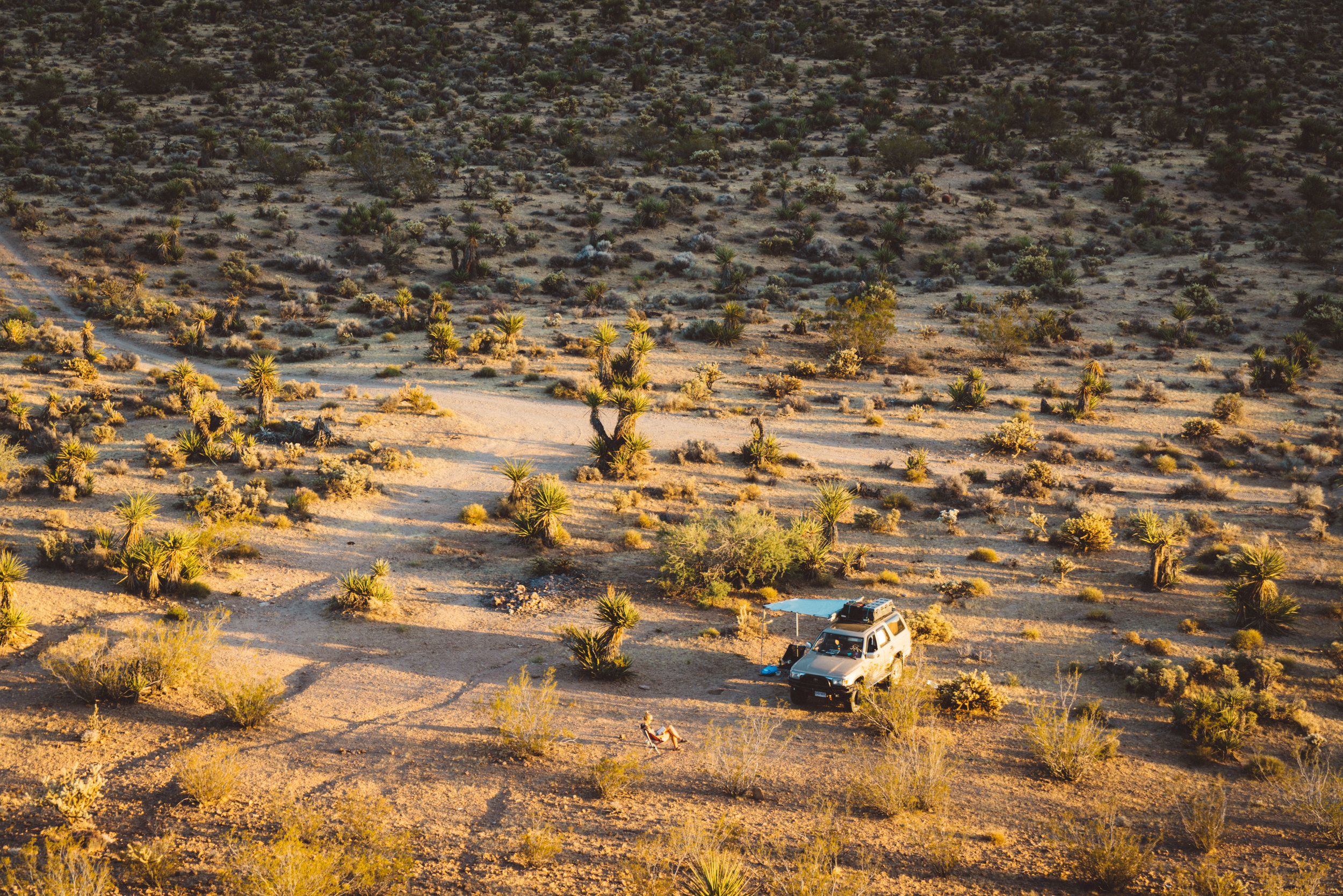Our campsite in the Mojave.
