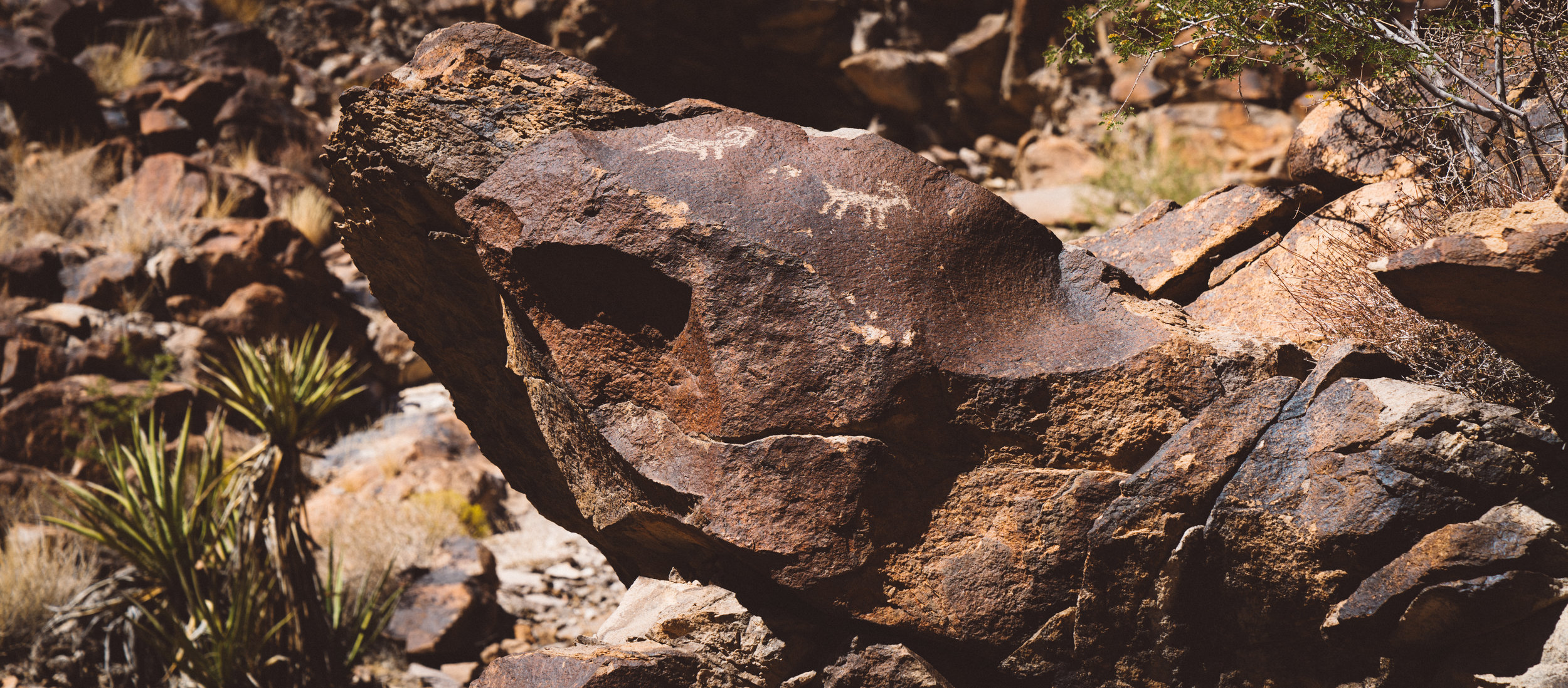 The petroglyphs at Sloan Canyon.