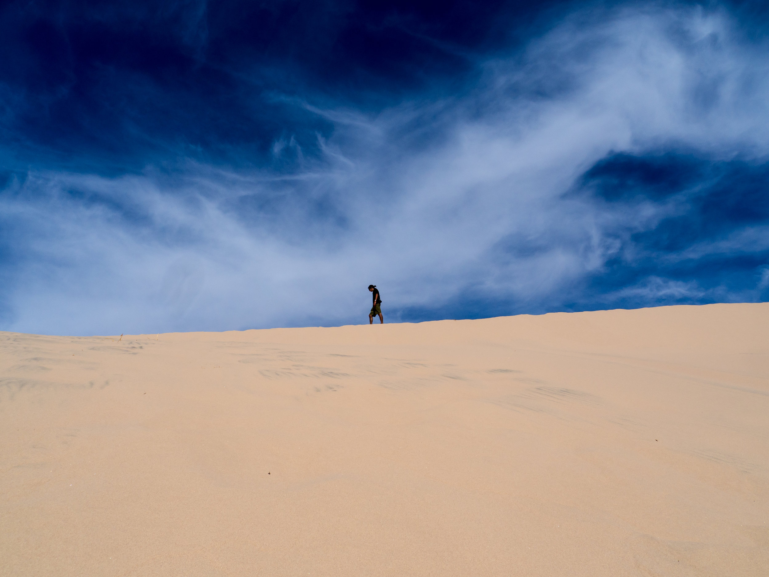 Me atop the tall Kelso Dune. Photo Credit:  Danielle Seeliger .