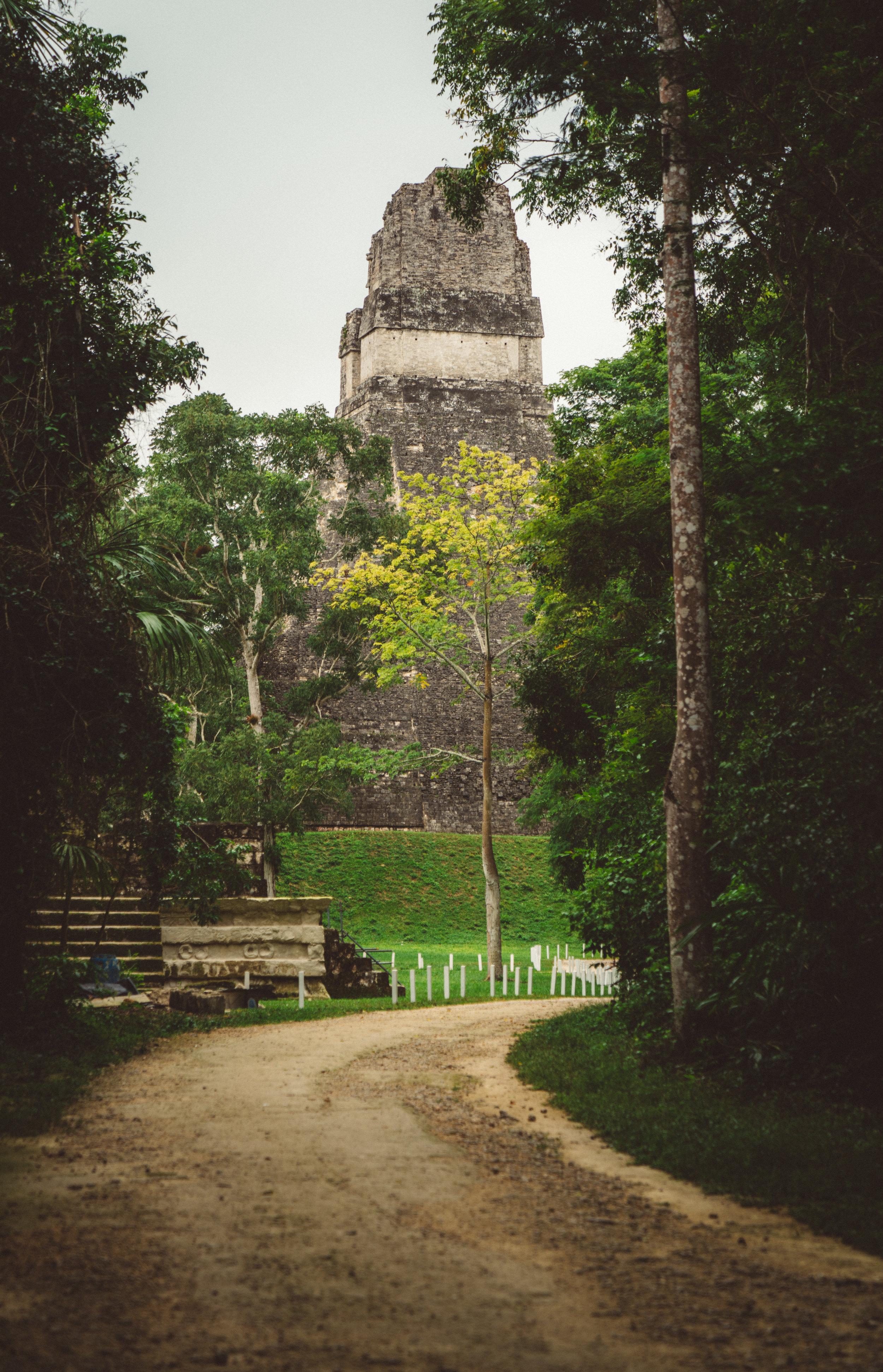 The Ruins of Tikal.