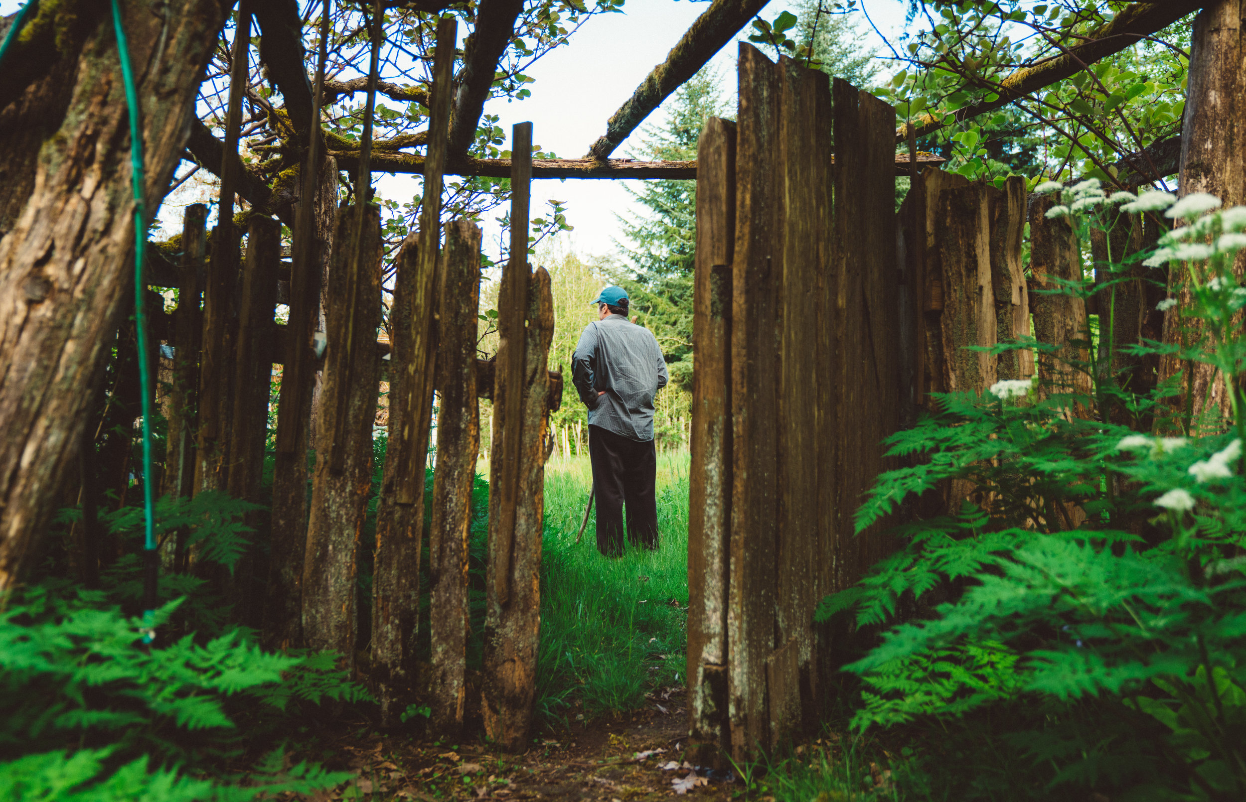 My father through the gate into the back field.