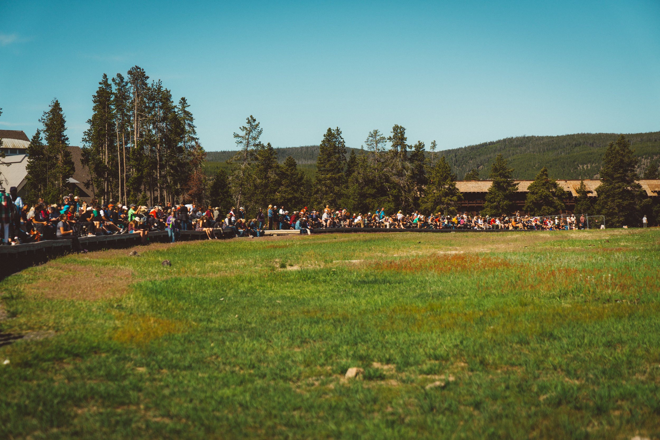 The insane crowds waiting for  Old Faithful .