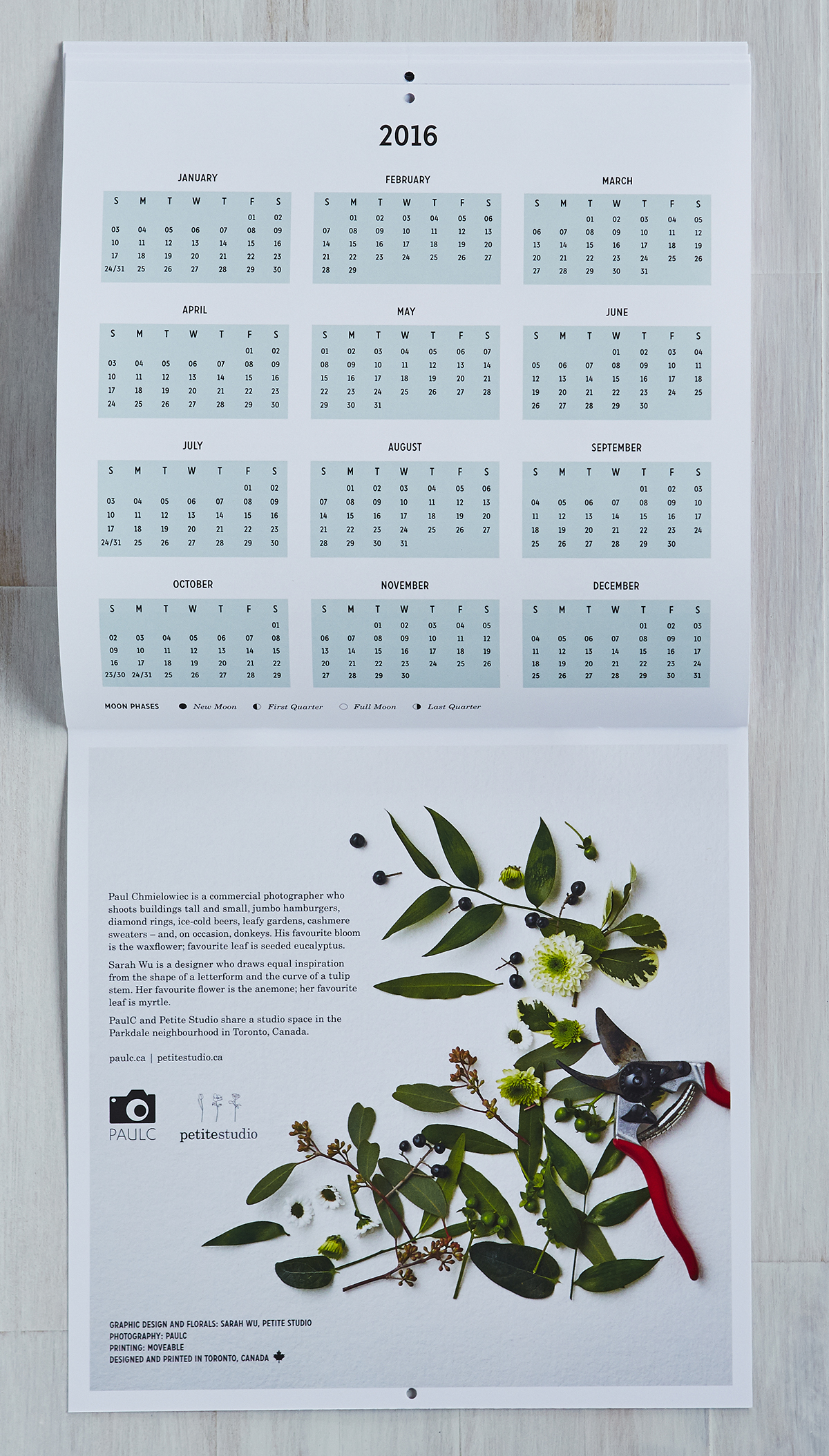 Petal + Leaf.  Calendar design collaboration with Paul C, 2015