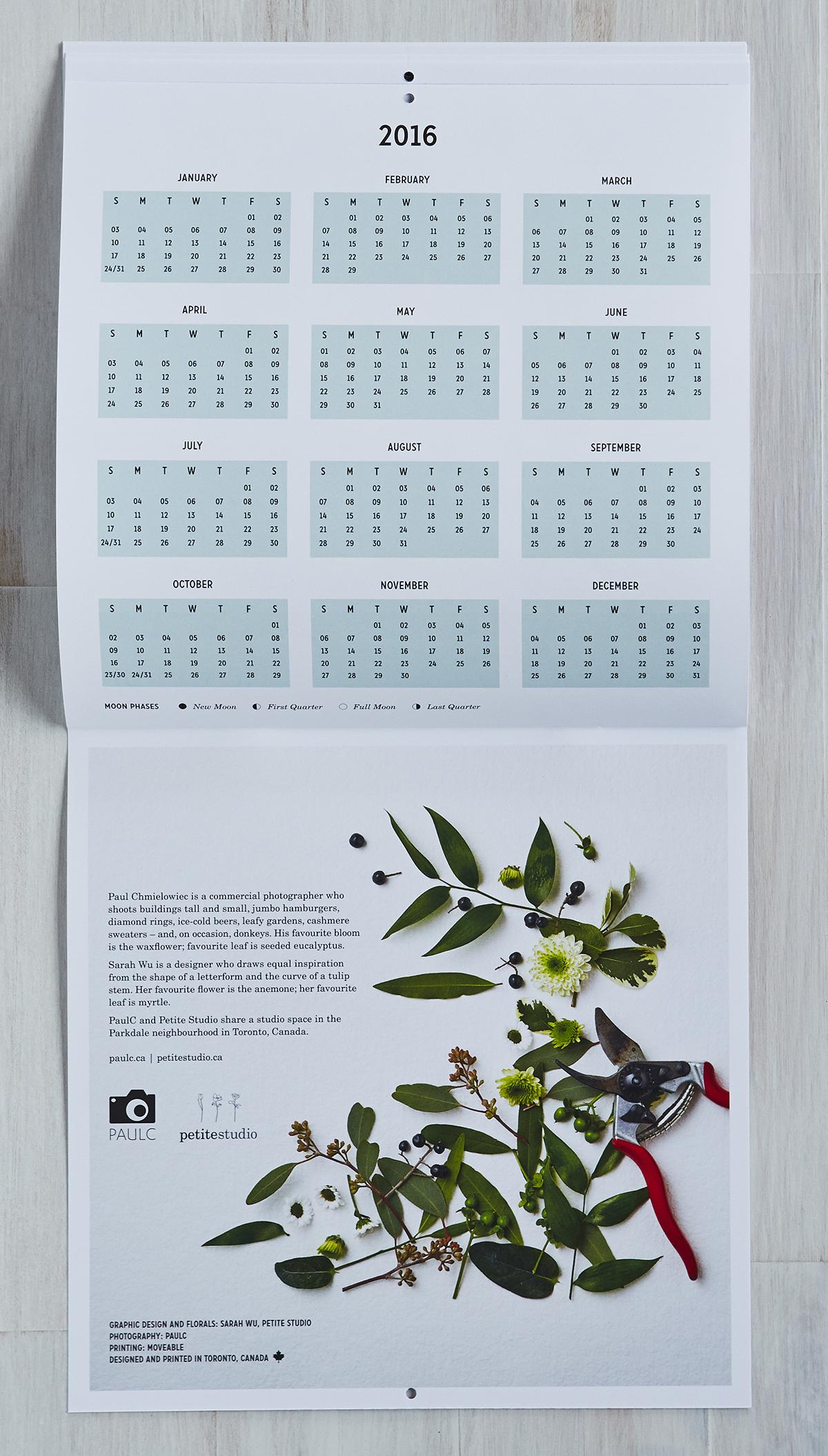 Petal + Leaf. Calendar design collaboration with Paul C, 2015