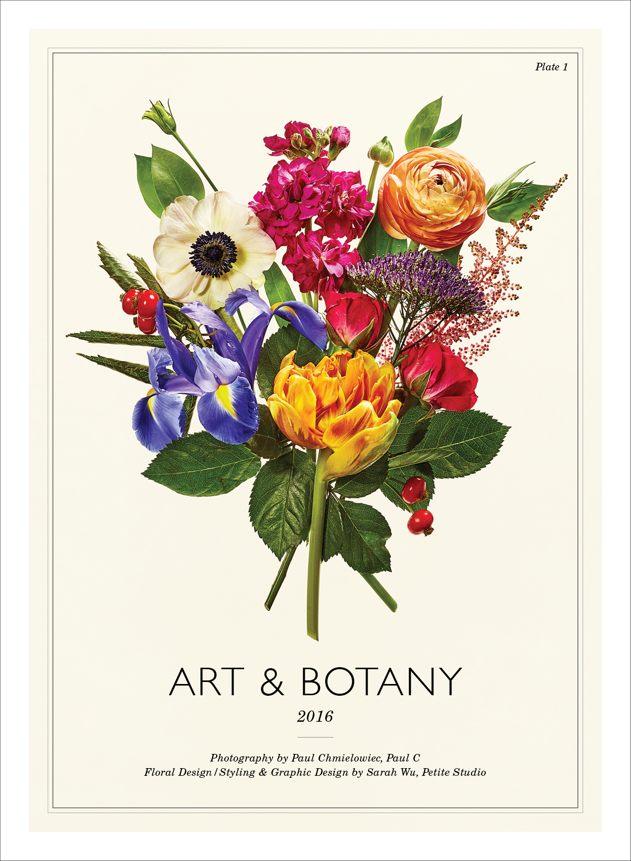 Art & Botany.  Calendar design collaboration with Paul C, 2016