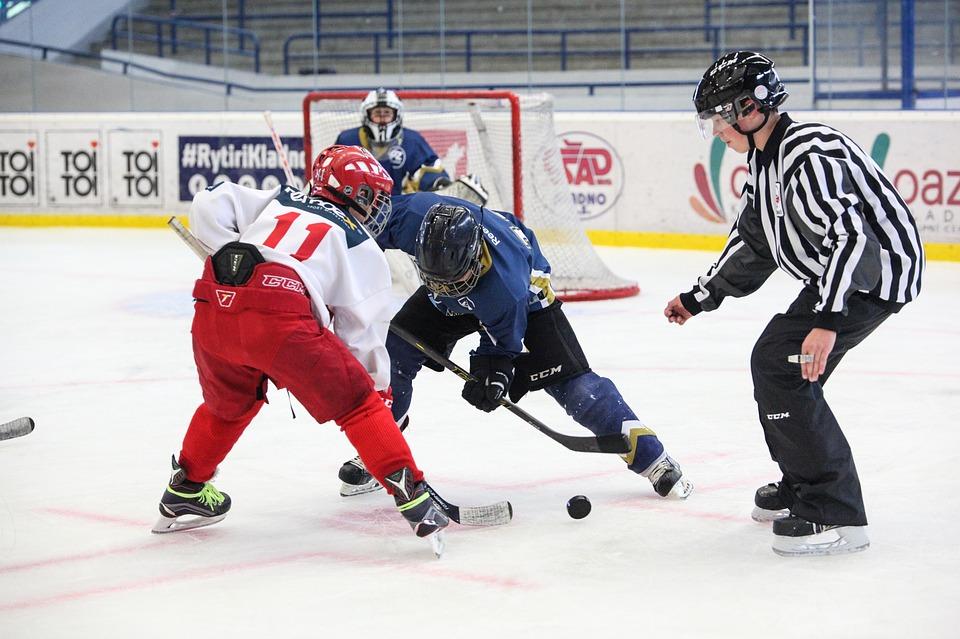 hockey assumption