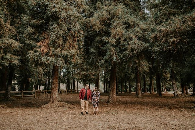 Are you a little nervous for your upcoming couple's session? Here are a few tips to help you prepare for your session, but before we begin, just know that the first few minutes of anything is a little awkward. Don't worry, we will get through this together. ⠀⠀⠀⠀⠀⠀⠀⠀⠀ Tip 1: Set your clothes, accessories, props, and anything else you plan to bring to your session, out the night before. This will help you not feel rushed the day of your session ⠀⠀⠀⠀⠀⠀⠀⠀⠀ Tip 2: Voice your questions or concerns. If you feel stressed about anything or have questions about anything, feel free to communicate it. ⠀⠀⠀⠀⠀⠀⠀⠀⠀ Tip 3: Take the day to relax on the day of your session. It's important to be relaxed because if your not, then it will show in your photos. Take it easy the day of, the best way to do this is by referring back to tip 1. ⠀⠀⠀⠀⠀⠀⠀⠀⠀ ✨⠀⠀⠀⠀⠀⠀⠀⠀⠀ At the end of the day, it's important to remember that it's ok to be a little nervous. I assure you that as we continue on with your session, you will start feeling more and more comfortable. We are in this together, and I will make sure that you always have something to do. Most importantly I will make sure that the time we spend together is fun and fully devoted to celebrating your love. Let's do this thing! ❤️📸