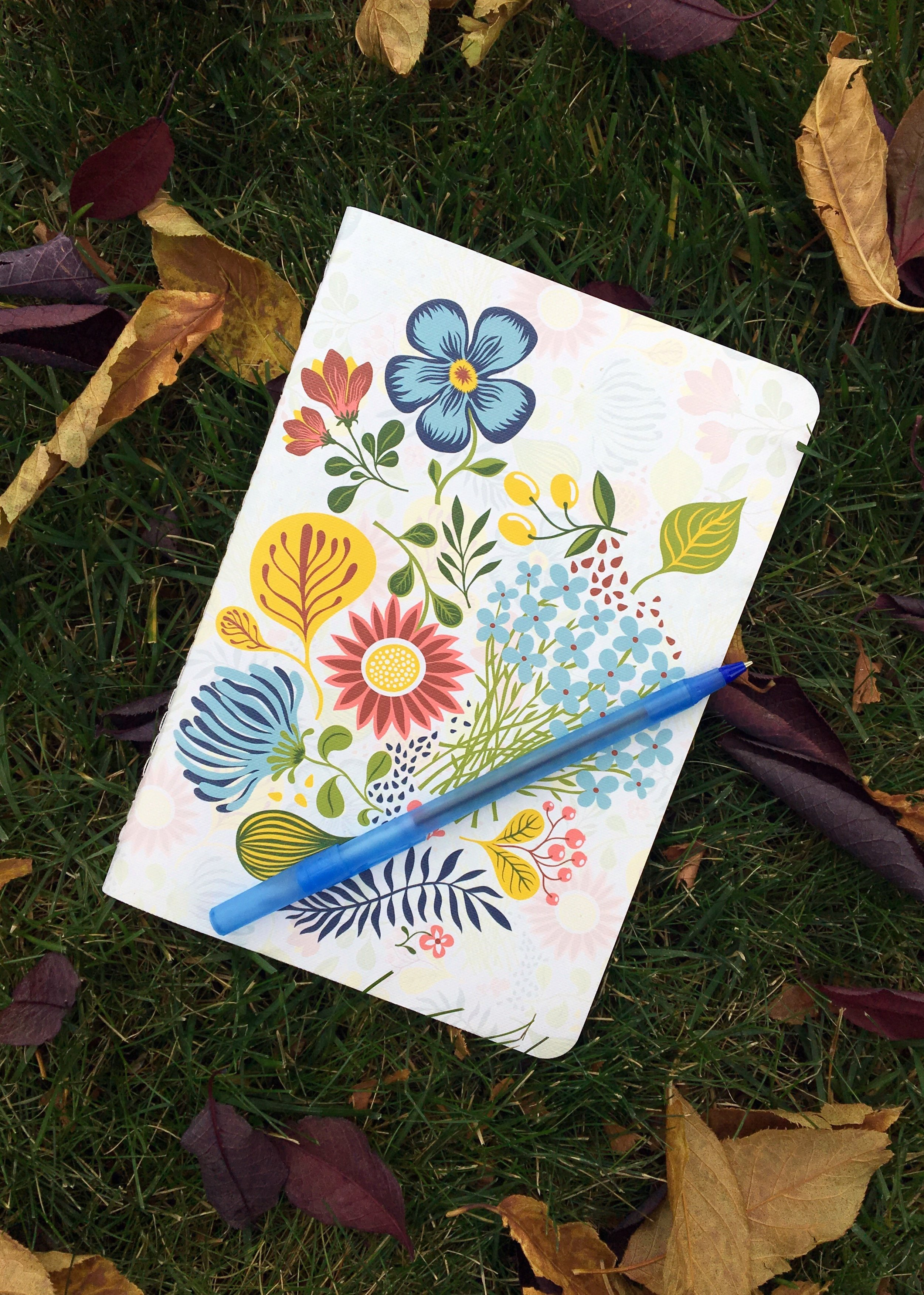 Journal in Grass & Leaves Oct 10, 2017.jpg