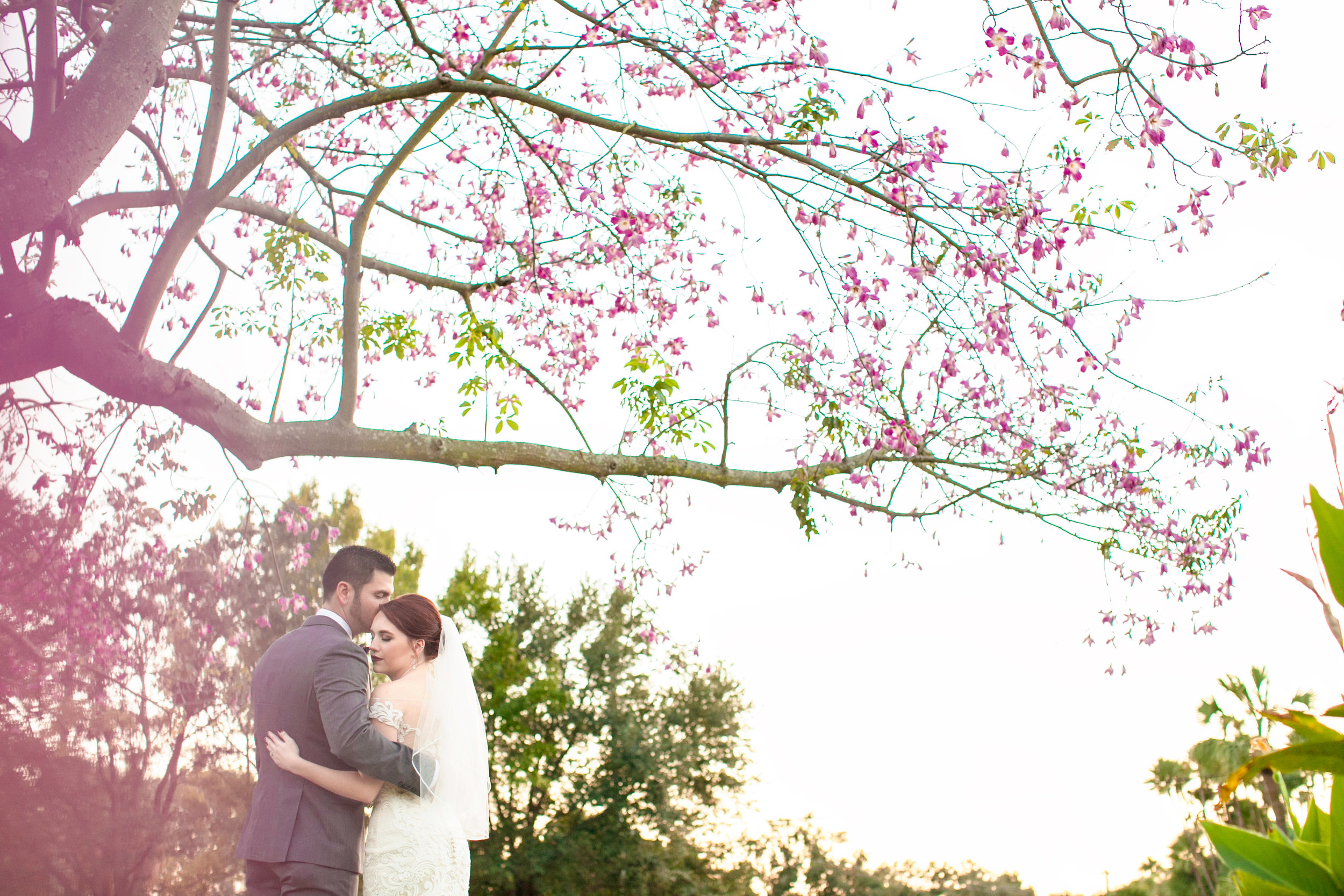 Rebecca Newman Photography Wedding