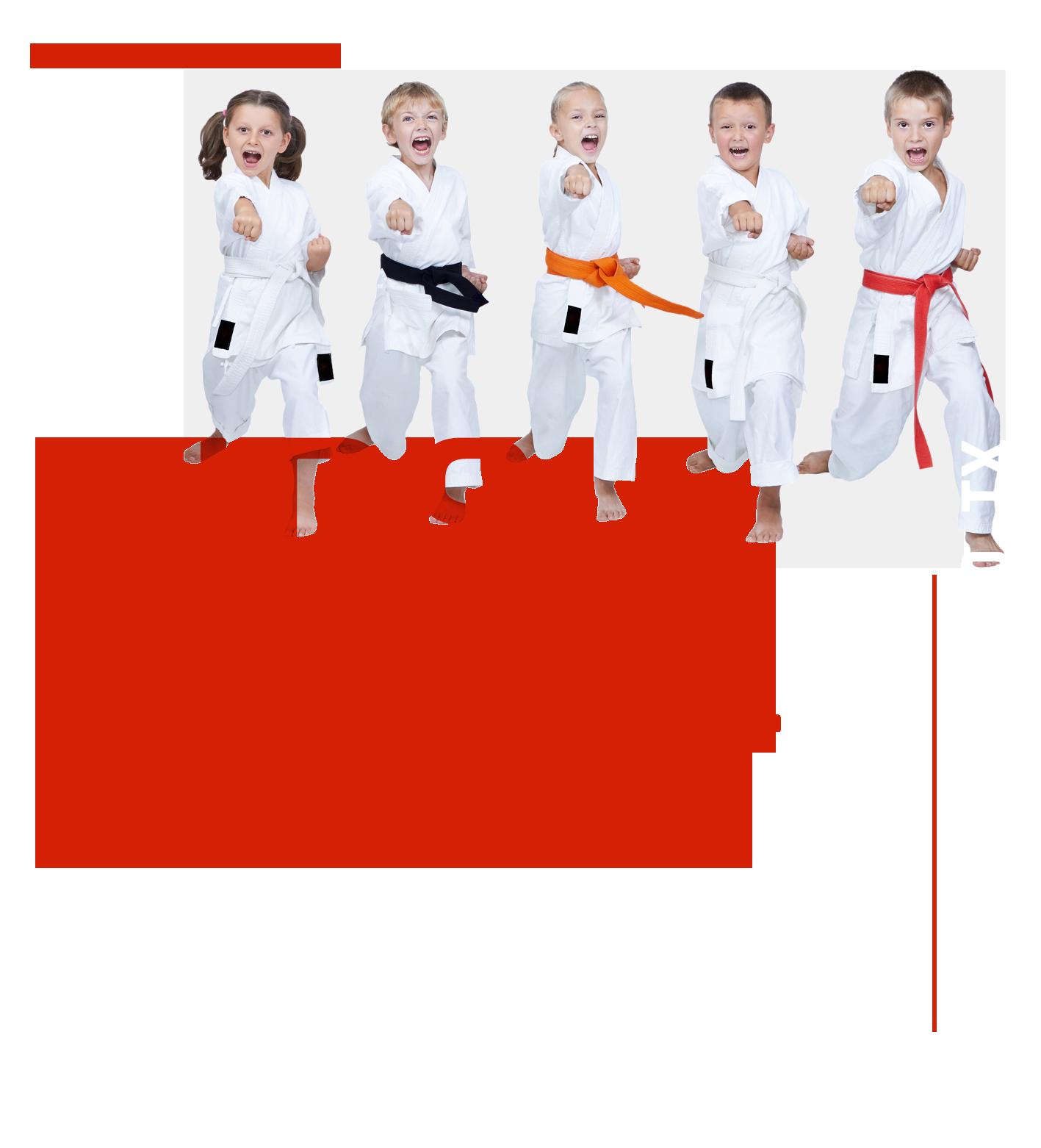 Kids Martial Arts in Mansfield Texas