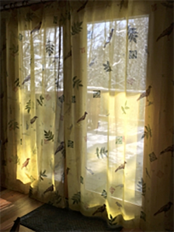 Curtains hanging in the dining room.