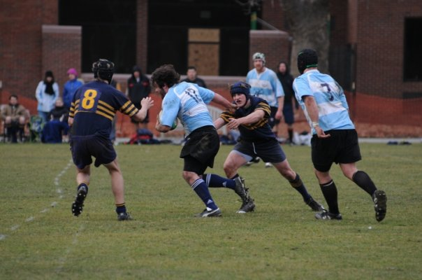 Blue Mountain Rugby